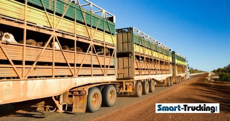 Road Train Outback Australia Hauling Cattle